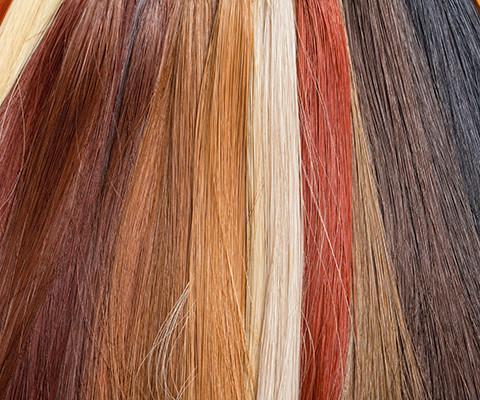 colore e forma capelli