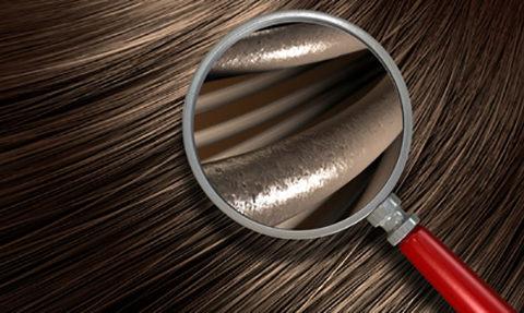 analisi microcamera capello